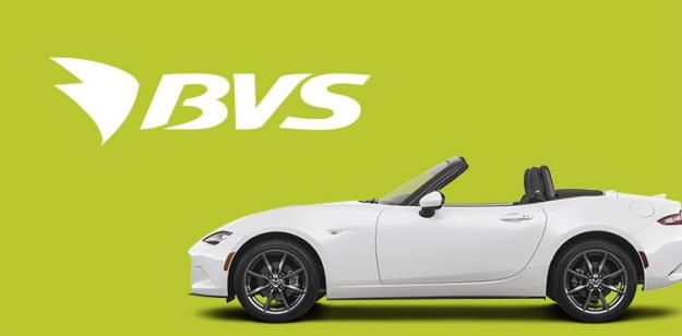 Создание корпоративного сайта сети АЗС-BVS