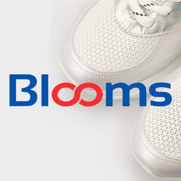 Создание интернет-магазина BLOOMS
