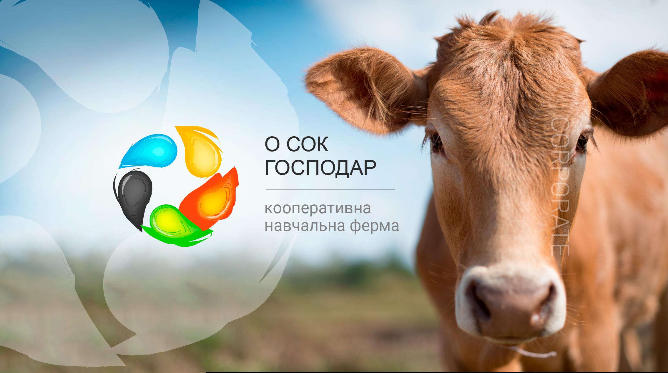 """Создание сайта для кооперативной фермы """"О СОК ГОСПОДАР"""""""